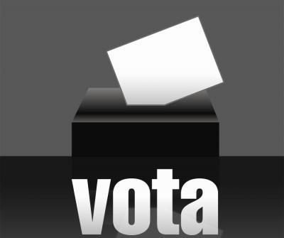 20090604095244-vota.jpg